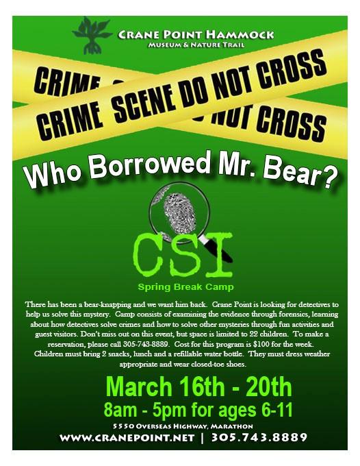 CSI Spring Break Camp Flyer